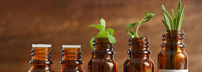 Botanical medicine and homeopathy are frequently used in naturopathic treatments