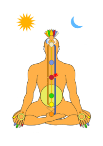 This image shows a human body outline with the seven chakras, or seven body energetic centers