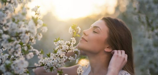 Aromatherapy Essential Oils for Anxiety